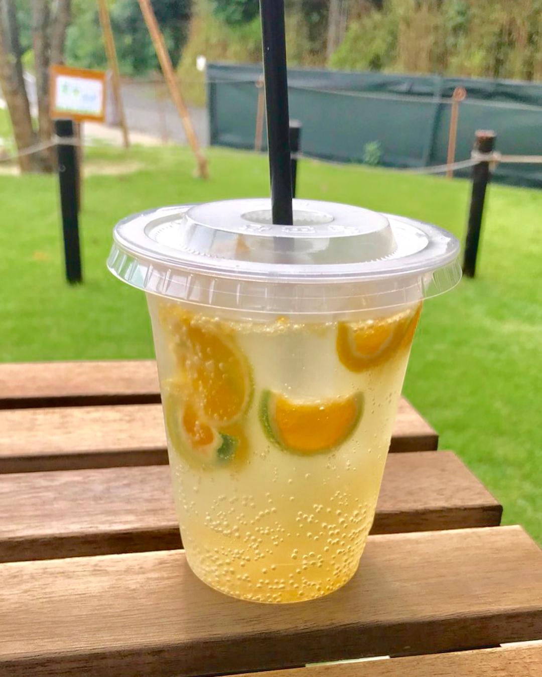 摘果オレンジコーディアル(2018.08.25)