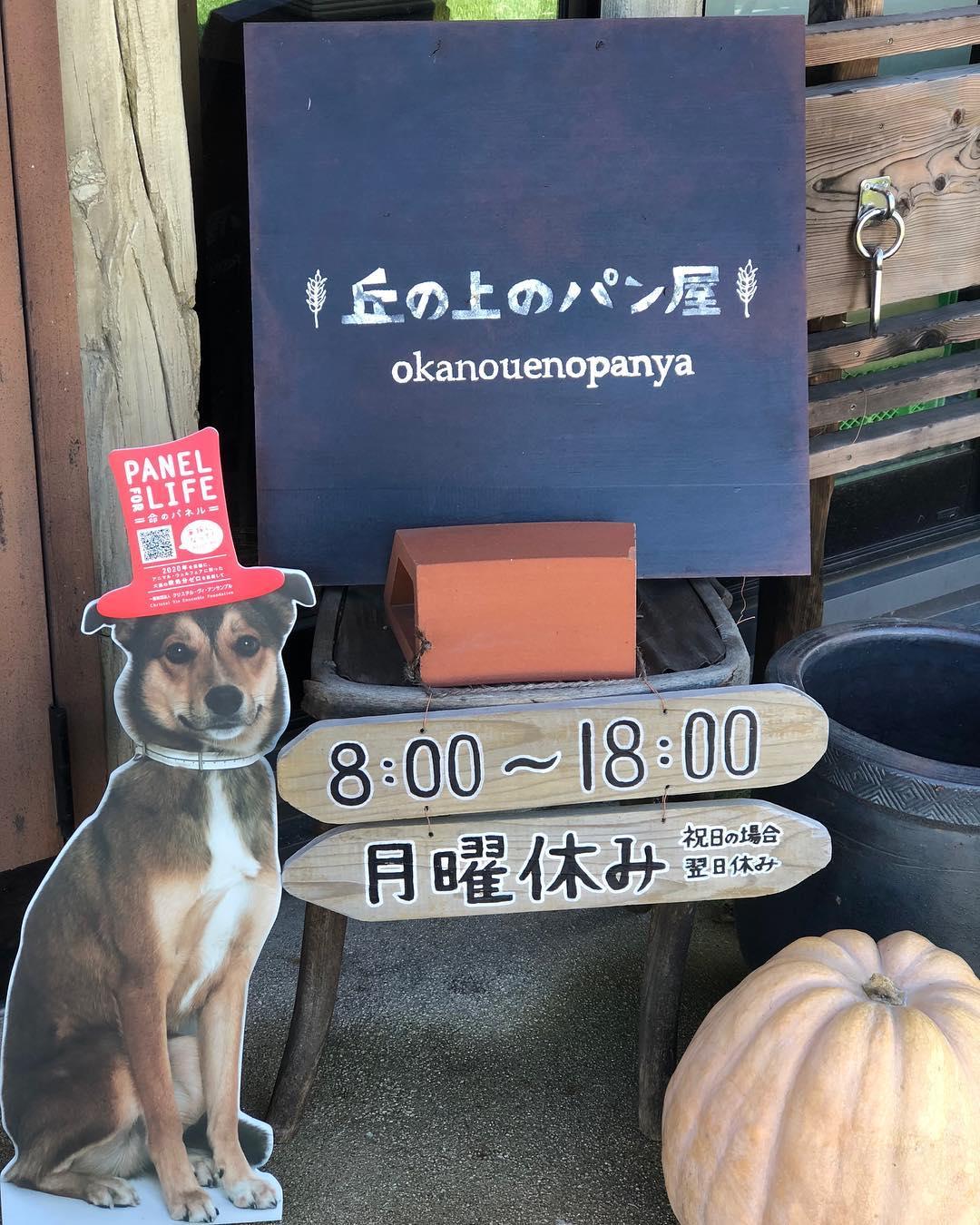 命のパネル(2018.10.08)