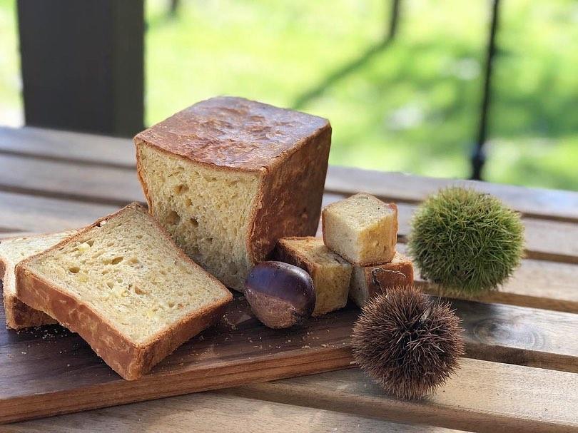 秋の新商品 栗のパン「シャテーニュ」がスタートしました