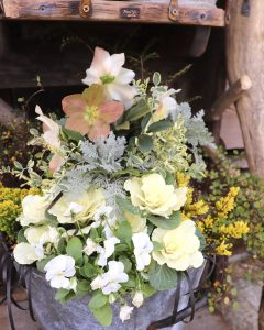 季節によって、お店のお花は変わっております(2019.12.18)