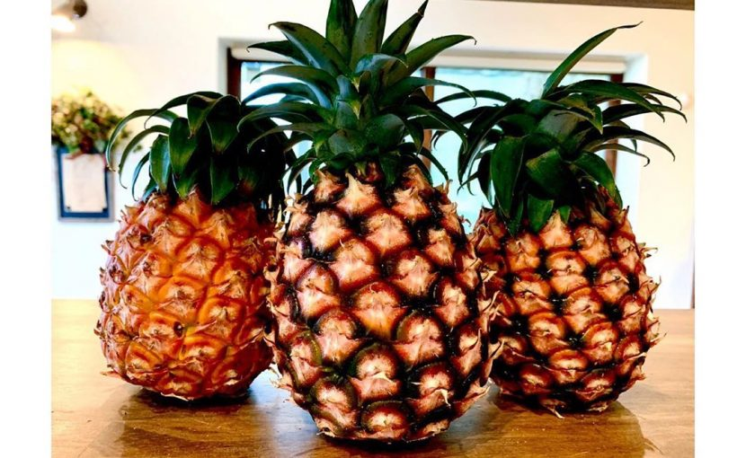 沖縄西表島「アララガマ農園」直送のピーチパインを使用したデニッシュ販売します(2020.06.03)