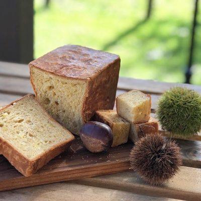 秋の新商品栗のパン「シャテーニュ」をスタートします(2020.10.02)